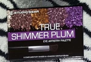 Studio Gear Shimmer Plum Palette 1