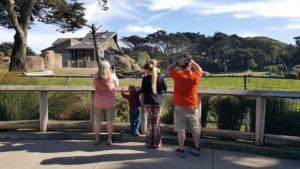 At the San Francisco Zoo