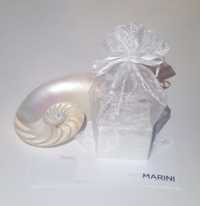 Marini Holiday Exfoliator 1